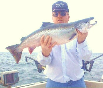 Atlanltic salmon 17 pounds
