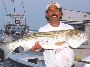 Captain Joe Russo with his 32 pound striped bass caught on bunker in Jamaica Bay  05-21-2003