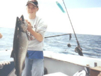 Salmon Fishing In Oswego New York